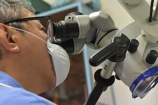 歯内療法学会の理事を務める小林優先生